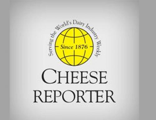 Cheese reporter – Amaltheys 2014